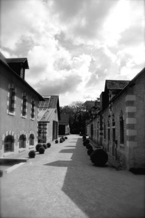 Chaumont sur Loire (2010)