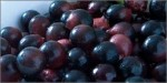 acai-photo nonispania.com.jpg
