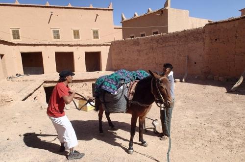 hotel,maroc,tourisme,randonnée,trek