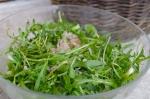 cuisine,plante,recette