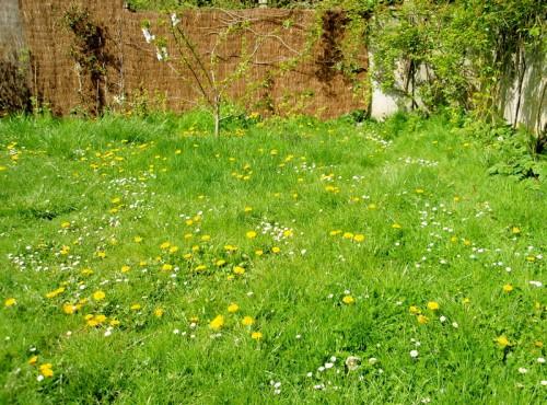 notre jardin sannois.jpg