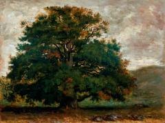 théodore rousseau arbre.jpg