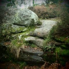 rocher de fontainbleau.jpg